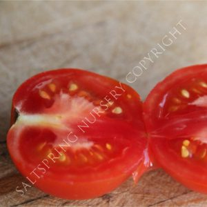 Tomato 'Lunch Bucket' Seeds