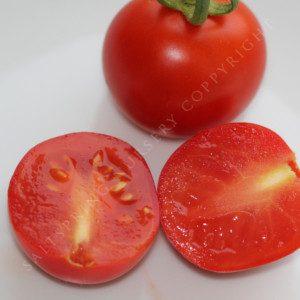 'Ailsa Craig' Heirloom Tomato