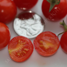 Sweety Cherry Tomato