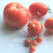 Tomato Brandywine Heirloom Seeds