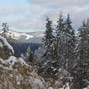 Snow Delays Spring Planting