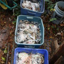 worm composting bins